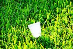 Plastic kop op het gras Stock Fotografie