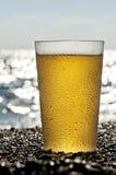 Plastic kopp av öl som plattforer på sanden vid sen arkivbild