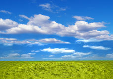 Plastic landscape. Green plastis field, blue sky and white clouds Stock Image