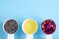 Plastic lepels met olijfolie en diverse het helen kruiden - de droge lavendel en de hond namen bloemen toe Aromatherapy, kruideng stock fotografie