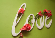 Plastic letters love on green background Stock Images
