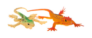 Plastic lizards Royalty Free Stock Photo
