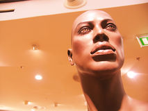 Plastic Mannequin. Unusual plastic mannequin Royalty Free Stock Photography