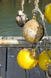 Plastic marker buoys Royalty Free Stock Photos