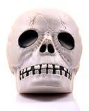 Plastic menselijke schedel Royalty-vrije Stock Afbeeldingen