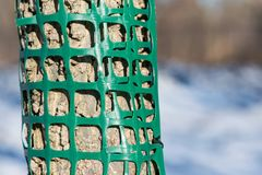 Plastic mesh protecting trees from animal destruction. Plastic mesh protecting trees from animal destruction during winter stock photo