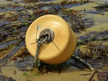 Plastic mooring buoy lying on beach. A yellow plastic mooring buoy for small boats lying on a beach at low tide Royalty Free Stock Image