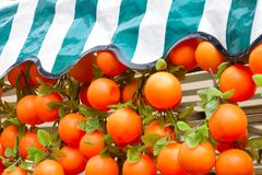 Plastic Oranges with cover Royalty Free Stock Images
