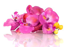 Plastic orchid flower branch Royalty Free Stock Image