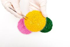 Plastic pellets . Colorant for polymers in granules. Plastic pellets in the hands with gloves and tweezers.  Royalty Free Stock Image