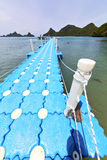 Plastic pier  coastline of a  green lagoon and tree  rope Royalty Free Stock Photo