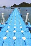 Plastic pier  of a  green lagoon and   kho phangan   bay Royalty Free Stock Photos