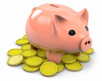 Plastic piggy with many coins Stock Photos