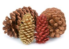 Plastic pine cones Royalty Free Stock Photos