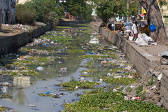 Plastic polluted river India, Tamil Nadu Stock Photos