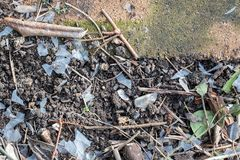 Plastic pollution. Degraded brittle plastic as a garden soil pollutant. Polymer degradation and microplastic waste as a hazard to the environment. Man-made stock photo
