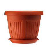 Plastic pot Royalty Free Stock Image