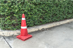 Plastic red cone. And green trimmed plants on the concrete road stock photo