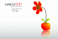 Plastic red flower lamp Stock Photo