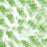 Plastic rings background Royalty Free Stock Image