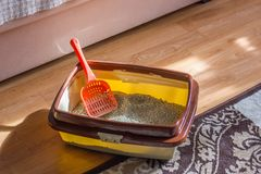 Plastic scoop in a cat litter box, standing on a floor. royalty free stock photos