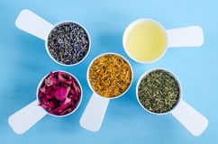 Plastic scoops with olive oil, dry marigold, lavender, parsley and dog rose flowers. Royalty Free Stock Photos