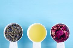 Plastic scoops with olive oil and various healing herbs - dry lavender and dog rose flowers. Aromatherapy, herbal medicine and nat stock photography
