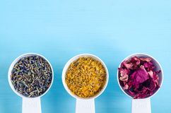 Plastic scoops with various healing herbs - dry marigold, lavender and dog rose flowers. Aromatherapy, herbal medicine and natural Royalty Free Stock Photos