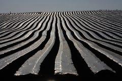 Plastic sheeting Stock Image