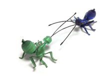 Plastic sheets model of ants Stock Photos