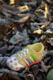 Plastic shoe on autumn leaves Stock Images
