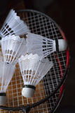Plastic shuttlecocks on badminton rackets Stock Images