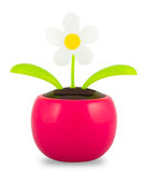 A Plastic Solar Powered Dancing Flower on White Background royalty free stock photography