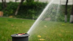 Plastic sprayer during watering of green lawn grass. Garden sprinkler working in the grass. Slow motion