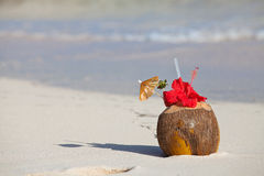 Plastic straw in a coconut by the shore Stock Images