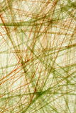 Plastic string mesh Stock Image