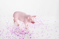 Plastic stuk speelgoed beeldje van een varken op een witte achtergrond stock fotografie