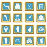 Plastic surgeon icons azure Royalty Free Stock Photos