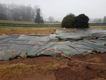 Plastic tarp on wet ground with sandbags at dig site. Plastic tarp on wet ground with sandbags at archaeology dig site stock photo