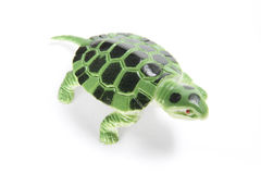 Plastic Tortoise Stock Image