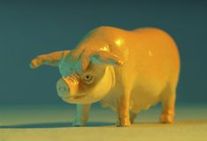 Plastic toy pig. Close up of a plastic toy pig Stock Images