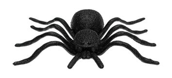 Plastic toy spider Royalty Free Stock Image