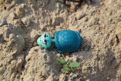 Plastic toy turtle lost by a child (horizontal shape) Royalty Free Stock Images