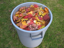 A plastic trash container full of yellow and red leaves Royalty Free Stock Photo