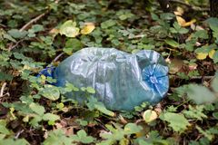 Plastic trash in the forest. Tucked nature. Plastic container lying in the grass. royalty free stock images