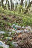 Plastic trash in the forest. Tucked nature. Plastic container lying in the grass.  royalty free stock image
