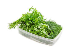 Plastic tray with coriander and dill and bunch of parsley Stock Image