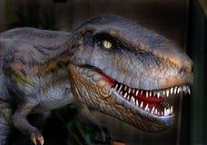 Plastic Tyrannosaurus Rex. Stock Photography