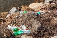Plastic waste on the lake shore in the Czech Republic. Environmental pollution. Recycling of plastic waste.  royalty free stock images