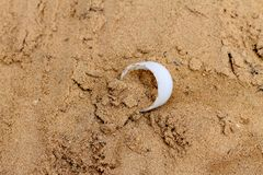 Plastic waste on the surface. waste on sand royalty free stock photo